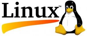 هل علينا الإنسحاب من عبودية ميكروسوفت الى حرية لينكس |مصادر وكتب قيمة